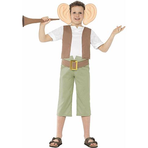 Roald Dahl's BFG costume